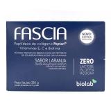Fascia C/30 Saches X 11 Gr